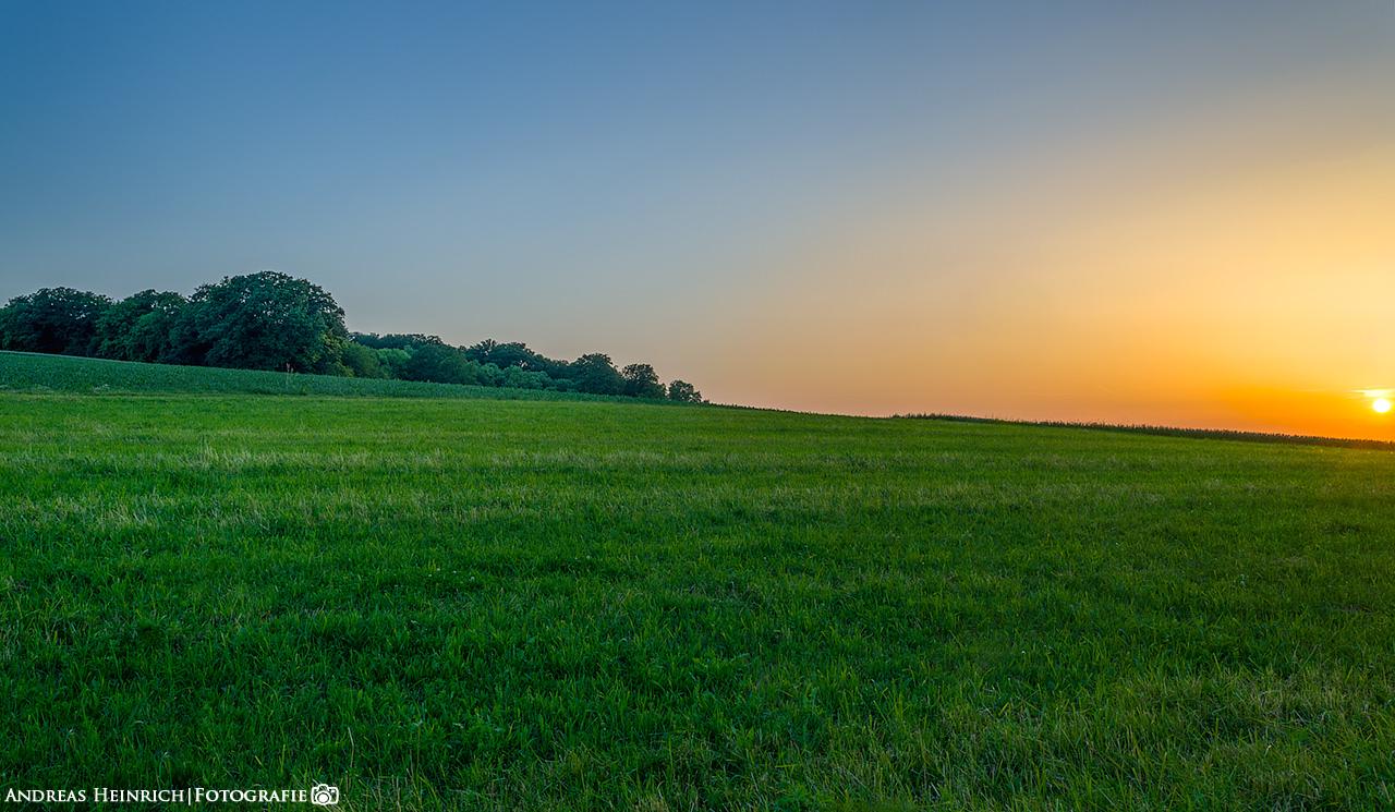 Sonnenuntergang in einem Feld in der nähe von Dahenfeld